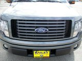 2010 Sterling Grey Metallic Ford F150 FX2 SuperCrew #29004670