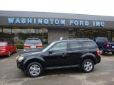 2009 Black Ford Escape XLT V6 4WD #29064788