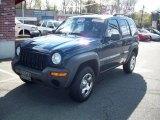 2002 Patriot Blue Pearlcoat Jeep Liberty Sport 4x4 #29201587