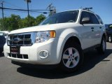 2009 White Suede Ford Escape XLT V6 #29266159