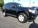 2009 Black Pearl Slate Metallic Ford Escape XLT V6 #29266197