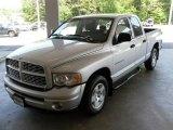 2004 Bright Silver Metallic Dodge Ram 1500 SLT Quad Cab #29404708