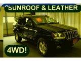 2002 Patriot Blue Pearlcoat Jeep Grand Cherokee Laredo 4x4 #29404479