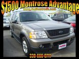 2003 Harvest Gold Metallic Ford Explorer XLT 4x4 #29438758
