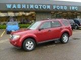 2009 Sangria Red Metallic Ford Escape XLT V6 4WD #29439137