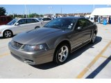 2001 Mineral Grey Metallic Ford Mustang Cobra Coupe #29483755