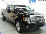 2010 Tuxedo Black Ford F150 Platinum SuperCrew 4x4 #29536668