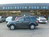 2009 Sterling Grey Metallic Ford Escape XLT V6 4WD #29600013