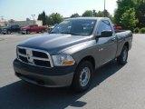 2010 Mineral Gray Metallic Dodge Ram 1500 ST Regular Cab #29669414