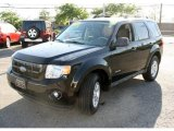 2009 Black Ford Escape Hybrid 4WD #29723657