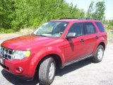2009 Sangria Red Metallic Ford Escape XLT V6 4WD #29723733
