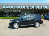 2009 Black Pearl Slate Metallic Ford Escape XLT V6 4WD #29762514