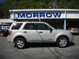 2009 Light Sage Metallic Ford Escape XLT V6 4WD #29762294