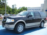 2010 Tuxedo Black Ford Expedition Eddie Bauer #29899537