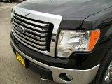 2010 Tuxedo Black Ford F150 XLT SuperCrew 4x4 #29899557