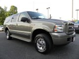 2005 Mineral Grey Metallic Ford Excursion Limited 4X4 #29899632