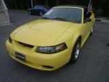 2001 Zinc Yellow Metallic Ford Mustang Cobra Convertible #29957531