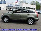 2007 Green Tea Metallic Honda CR-V EX-L 4WD #29956959