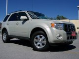 2009 Light Sage Metallic Ford Escape Limited #30036144