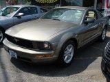 2005 Mineral Grey Metallic Ford Mustang V6 Deluxe Coupe #30036565