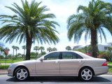 2004 Desert Silver Metallic Mercedes-Benz S 500 Sedan #30036170
