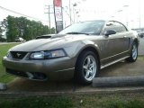 2001 Mineral Grey Metallic Ford Mustang Cobra Coupe #30036221