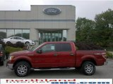 2010 Vermillion Red Ford F150 XLT SuperCrew 4x4 #30158004