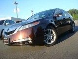 2009 Mayan Bronze Metallic Acura TL 3.5 #30330559