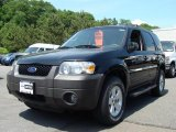 2006 Black Ford Escape XLT V6 4WD #30367613