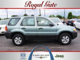 2006 Titanium Green Metallic Ford Escape XLS #30367372