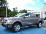 2010 Sterling Grey Metallic Ford F150 Platinum SuperCrew 4x4 #30484726