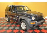2002 Patriot Blue Pearlcoat Jeep Liberty Sport 4x4 #30544221