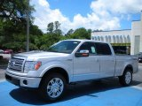 2010 Ingot Silver Metallic Ford F150 Platinum SuperCrew 4x4 #30543860