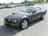 2007 Tungsten Grey Metallic Ford Mustang GT Premium Convertible #30544321