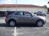 2010 Cyber Gray Metallic Chevrolet Equinox LS #30544160