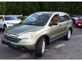 2007 Green Tea Metallic Honda CR-V EX 4WD #30598593