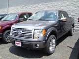 2010 Sterling Grey Metallic Ford F150 Platinum SuperCrew 4x4 #30616236