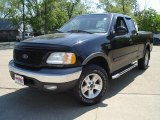 Black Ford F150 in 2002