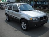 2006 Dark Shadow Grey Metallic Ford Escape XLT V6 4WD #30616485