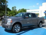 2010 Sterling Grey Metallic Ford F150 FX2 SuperCrew #30769849