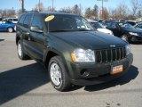 2006 Jeep Green Metallic Jeep Grand Cherokee Laredo 4x4 #30817059
