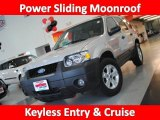 2006 Silver Metallic Ford Escape XLT #30816307