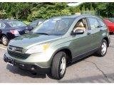 2007 Green Tea Metallic Honda CR-V LX 4WD #30894269