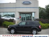 2009 Black Pearl Slate Metallic Ford Escape XLT V6 4WD #30935490