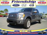2010 Sterling Grey Metallic Ford F150 Platinum SuperCrew 4x4 #31079695