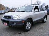 2004 Pewter Hyundai Santa Fe GLS #3096809