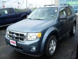 2010 Steel Blue Metallic Ford Escape XLT V6 4WD #31204171