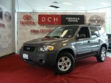 2006 Dark Shadow Grey Metallic Ford Escape XLT V6 #31332367