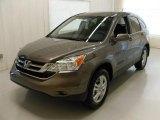2010 Urban Titanium Metallic Honda CR-V EX-L #31478538