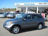 2010 Polished Metal Metallic Honda CR-V EX #31478358